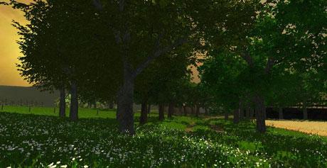 1356707446_grass-texture-v1-3