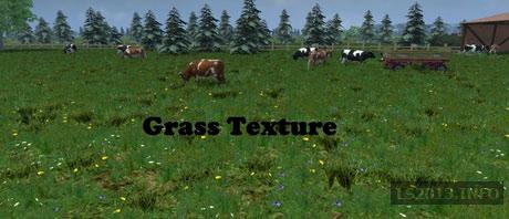 grass-textur--3