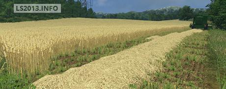 Wheat, Barley and Rape Textures v 1.0