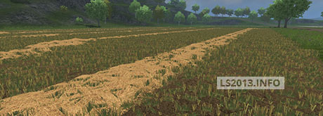 Wheat Barley Texture v 1.1