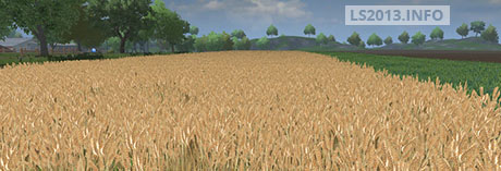 Image For Wheat-Texture-v-1.0