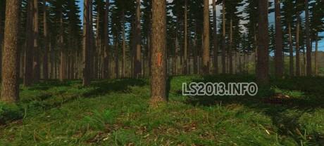 Brunzdorf-v-3.0-Forest-Edition-3