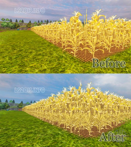 The-increase-in-Maize-Yield